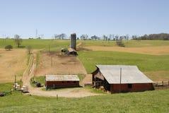 Bydła gospodarstwo rolne Zdjęcia Royalty Free