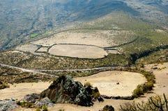 Bydlę klauzura w Andes zdjęcia royalty free