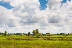 Bygd av norden av Thailand Gröna risfält med skogen under molnig himmel Royaltyfri Foto