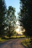 Bygd för lantgård för härliga träd för solnedgång stora lantlig Arkivfoto