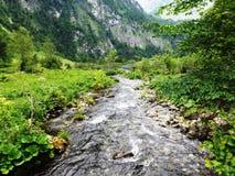 Bygd i Bayern med den lilla floden Royaltyfri Fotografi