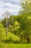 Bygd landskap 2 Fotografering för Bildbyråer