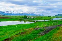 Bygd landskap i nordostliga Island Arkivfoto