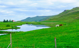 Bygd landskap i nordostliga Island Royaltyfri Bild