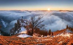 Bygd med skogen och kulle på nedgången, Slovakien maximala Vapec royaltyfri foto