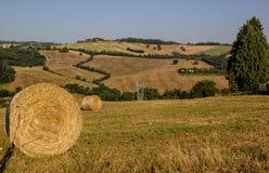 Bygd närliggande Todi - Umbria - Italien Arkivfoto