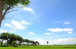 bygd thailand Royaltyfri Foto