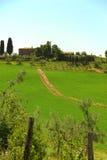 bygd tuscany fotografering för bildbyråer