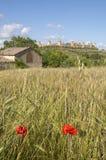 bygditaly monteriggioni tuscany Arkivbild