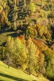 Bygdlandskap i en romanian villlage Royaltyfria Foton