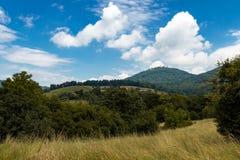 Bygdlandskap med berget, vingården och träd Arkivbild