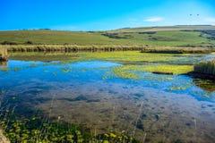 Bygdlandskapet på vägen till sju systrar i söder besegrar nationalparken, East Sussex, Eastbourne, UK royaltyfria bilder