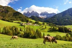 Bygdsikt av den Funes dalen, Bolzano, Italien Royaltyfri Fotografi