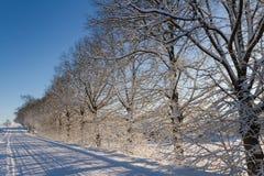 Bygdväg i en vinter Arkivbild