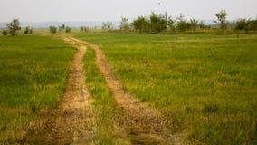 Bygdväg till och med grönt fält Royaltyfri Fotografi