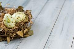 Bygga bo med easter ägg på en träbakgrund Arkivfoto