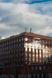 byggande modern universitetar Royaltyfri Bild