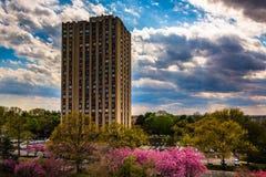 Byggande och färgrika träd i Gaithersburg, Maryland Arkivbilder