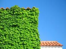 byggande räknad detaljmurgröna arkivfoton