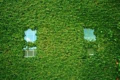 byggande räknad murgröna Royaltyfria Foton
