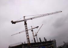 Byggande sträcker på halsen mot bakgrunden av en regnig himmel arkivbild