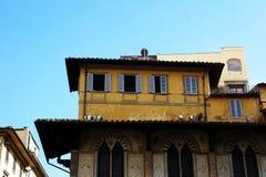 Byggande tak i Florence Italy Arkivfoton