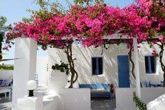 Byggnad av hotellet i traditionell grekisk stil med bougainvillean Arkivbild