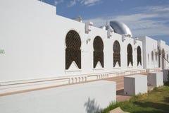 Byggnad av moskén Cheikh Saleh Kamel Royaltyfria Foton
