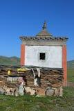 Byggnad för bönhjulet och högen av stenen täcker med mantras på tibetan platå Royaltyfria Bilder