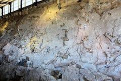 Byggnad för nationell monument för dinosaurie arkivfoto