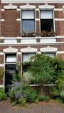 Byggnad i Haarlem Nederländerna royaltyfria foton