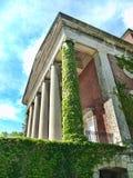 Byggnad med murgrönan och pelare Arkivbilder