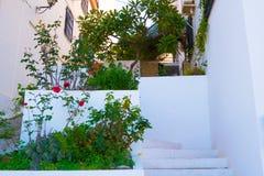 Byggnad med väggen dekorerade med nya röda blommor Spanien Nerja Royaltyfri Fotografi
