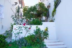 Byggnad med väggen dekorerade med nya röda blommor Spanien Nerja Fotografering för Bildbyråer
