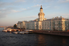 Byggnaden av Kunstkameraen st för domkyrkacupolaisaac petersburg russia s saint Royaltyfri Bild