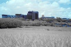 Byggnaden i near infared stil Arkivfoton