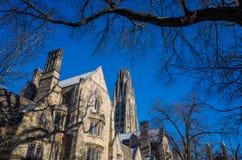 Byggnader för Yale universitet Arkivfoton