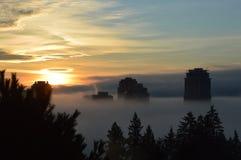 Byggnader i morgonmist Royaltyfri Foto