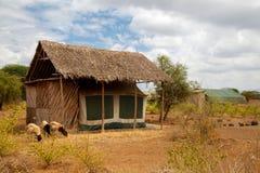 Byggnader i savannahen av Kenya Fotografering för Bildbyråer