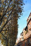 Byggnader i Toulouse Royaltyfri Bild