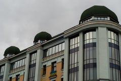 Byggnader och flaggor Arkivbild