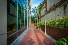 Byggnader och gångbana i i stadens centrum Columbia, South Carolina Royaltyfria Bilder