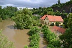 Byggnader och träd på den Prague suberben under översvämning Arkivbilder