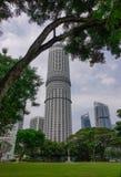 Byggnader på centret i Singapore Fotografering för Bildbyråer