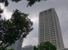 Byggnader på centret i Singapore Arkivbild