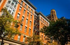 Byggnader på Clark Street i Brooklyn Heights, New York Arkivbilder