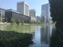 byggnader tokyo royaltyfri foto