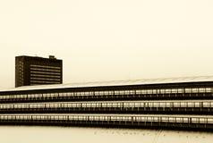 Byggnader under snön, hög kontrast Arkivfoto