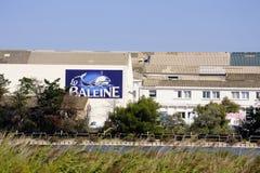 Byggnaderna av industriföretagsaltdammet Aigues-Mortes Arkivfoton