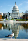 byggnadscapitol USA Royaltyfria Bilder